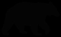 Bear By Felix Brönnimann, CH, for The Noun Project