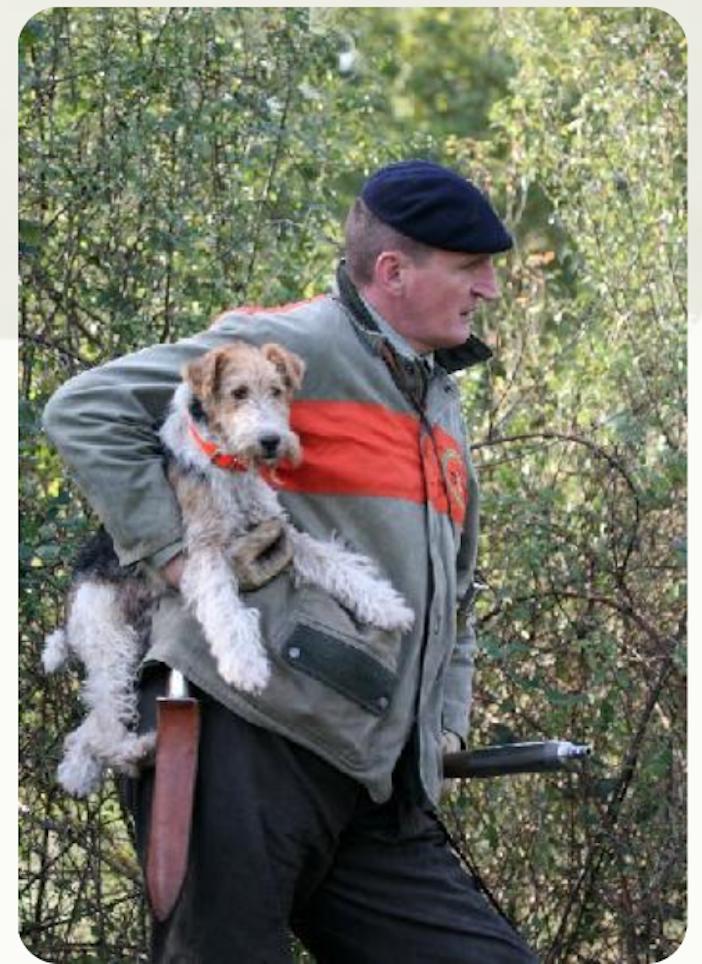 permis de chasse