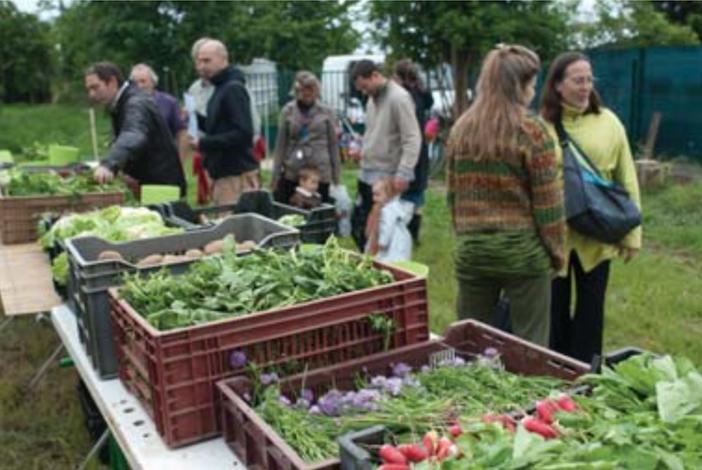 Etal de légumes, alternative à Europa City