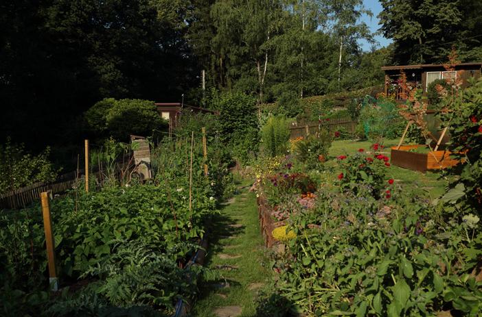 Le jardin en permacutlure