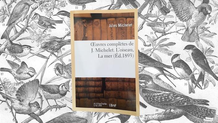 Jules Michelet, l'oiseau.