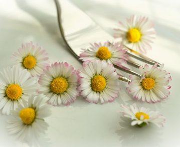 J'ai goûté pour vous 15 fleurs printanières comestibles, et j'ai adoré !