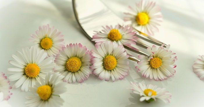 Paquerettes, fleurs comestibles, Pixabay