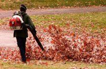 Les souffleuses de feuilles en action