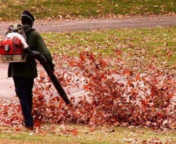 Les souffleuses de feuilles, ces machines absurdes et dangereuses