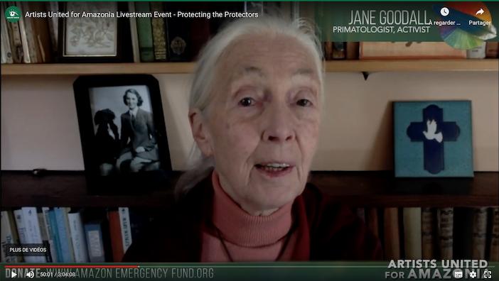 Jane Goudall chez elle