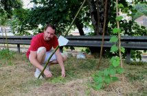 jardin du rail, alban