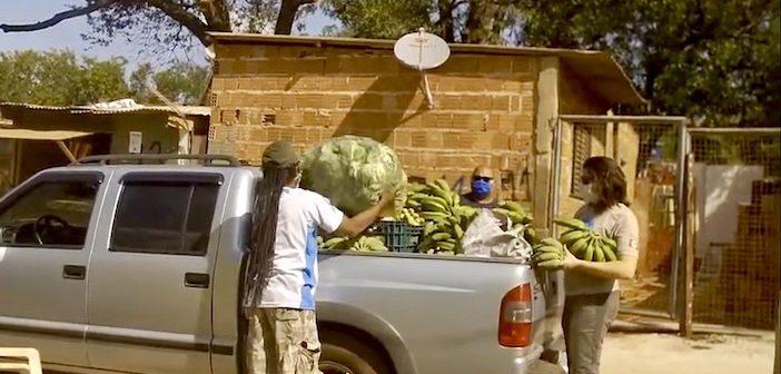 Dans les favelas du Brésil, des paysans distribuent de la nourriture aux urbains confinés et abandonnés par l'État