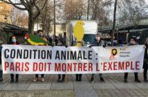 condition animale : fermeture du marché aux oiseaux