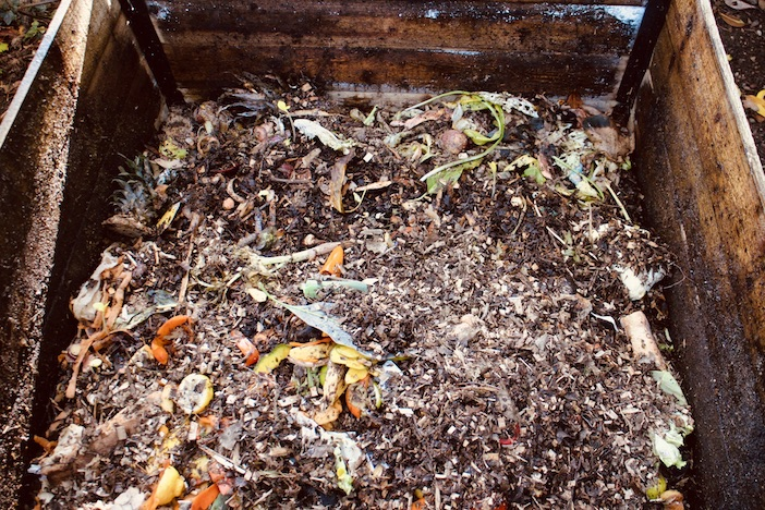 Le compost avant maturation